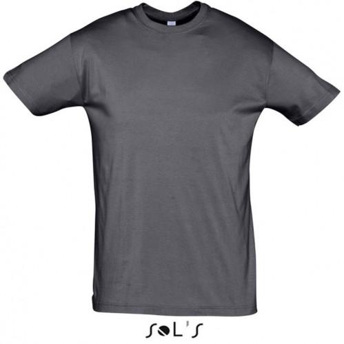 Regent T-Shirt 150 Unisex